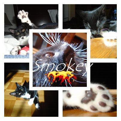 un montage de Smokey :)