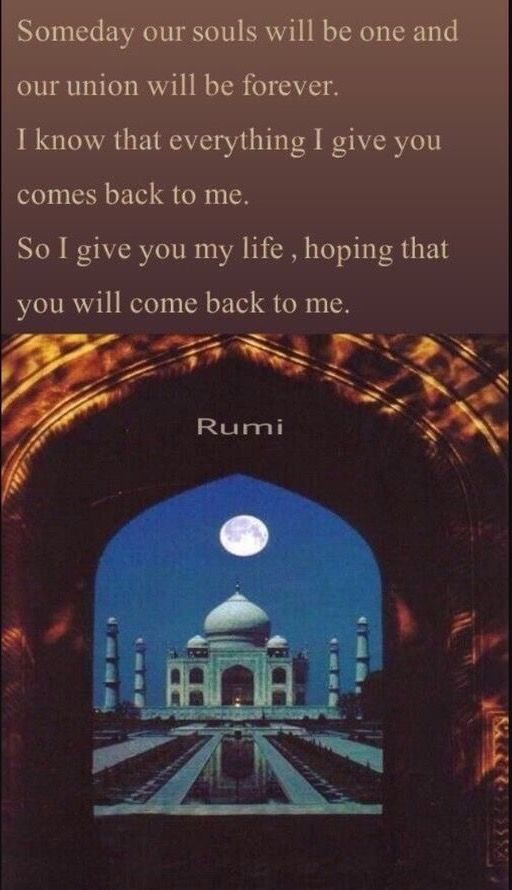 Someday our souls will be one and our union will be forever.  I know that everything I give you comes back to me. So I give you my life, hoping that you will come back to me.  Rumi