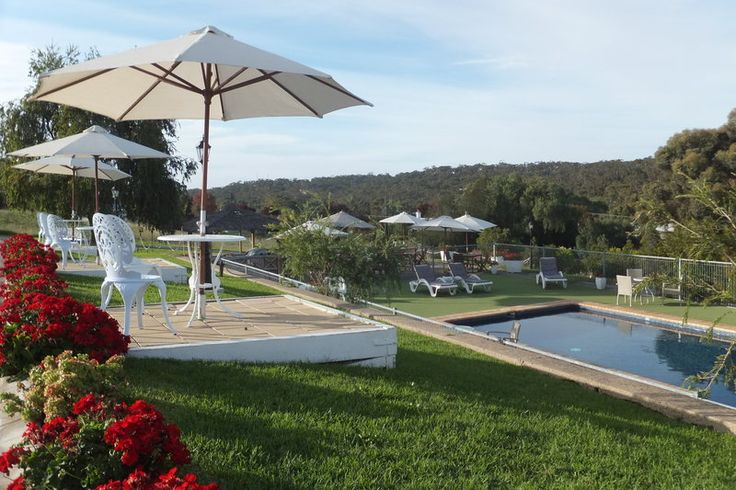 Clare Valley Motel: Riesling tours