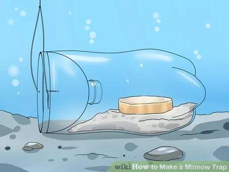 Image titled Make a Minnow Trap Step 8
