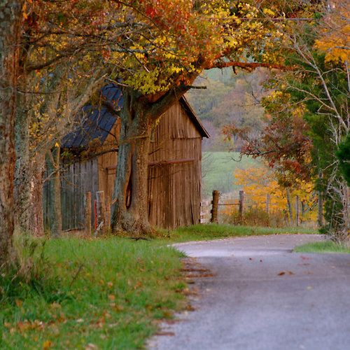 Followthewestwind: Past The Kentucky Barn Deep In Forest