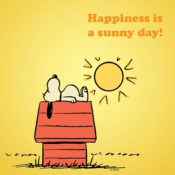 """The Peanuts Gang / Snoopy / """"Happiness is a sunny day""""!"""