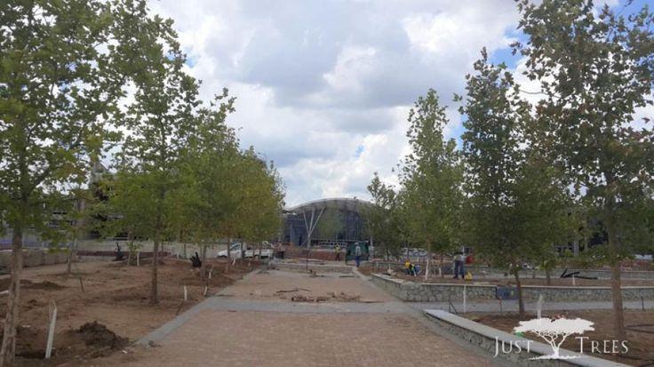 WF Park_4.jpg (940×528)