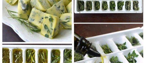 Come conservare le erbe aromatiche « Bioradar
