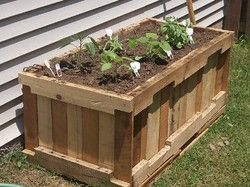 Here is another great use of a pallet   I am seriously going to have to get a couple