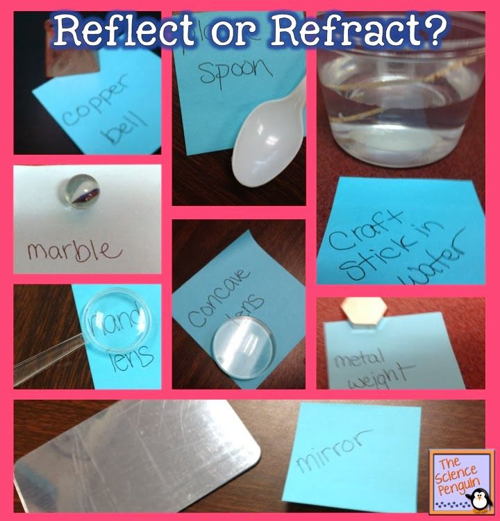 Reflect or Refract? Light reflection and refraction experiments for Science: The Science Penquin
