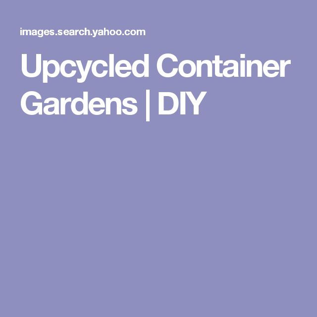 Upcycled Container Gardens | DIY