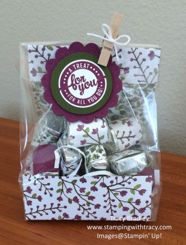 Treat Bag using Stampin' Up! paper and gusseted bags by Tracy Bradley  www.stampingwithtracy.com