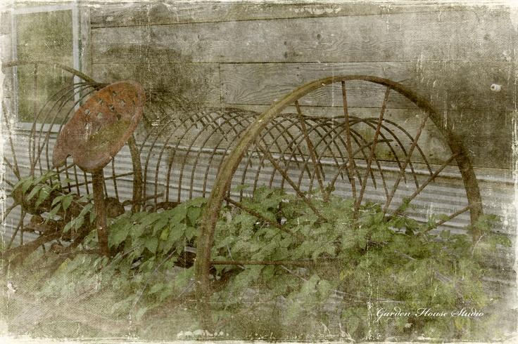 Farming Abandoned