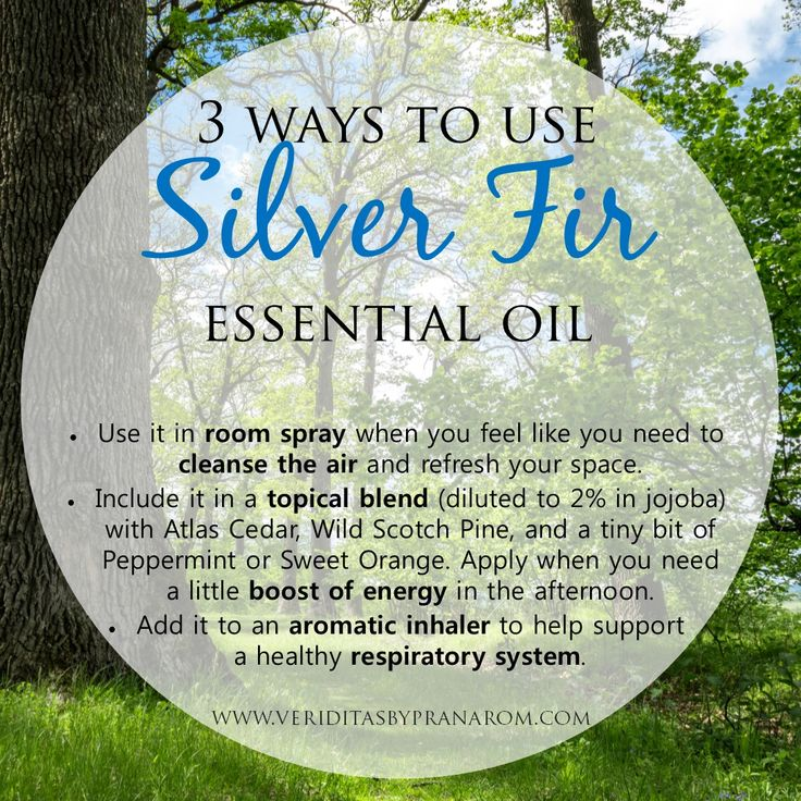 3 ways to use our new Silver Fir essential oil - a great addition to any aromatherapy kit!