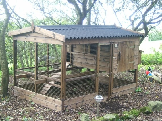 Chicken House Farm 25+ best poultry house ideas on pinterest | chicken coops, chicken