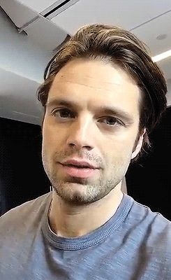 Sebastian Stan gifs