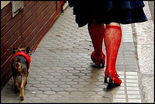 MARTIN PARR http://www.widewalls.ch/artist/martin-parr/ #photography