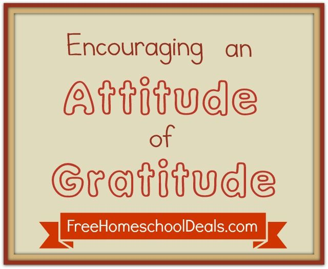 Expressing Gratitude with Thank You Notes