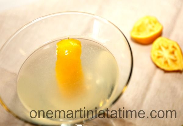 Meyer Lemon Cocktail | Just for Fun | Pinterest