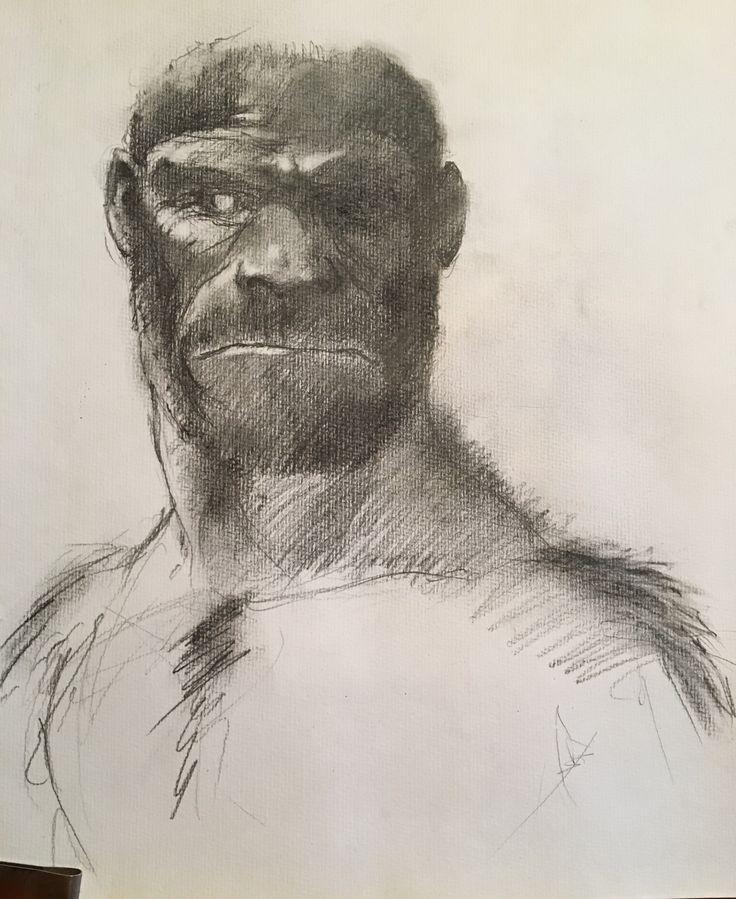 Tapetum. Pencil, charcoal.