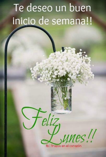 Te deseo un buen inicio de semana...Feliz Lunes!! @trazosenelcorazon