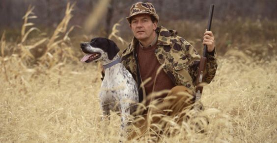 Cani da caccia morti nella stiva di un traghetto, denunciati cacciatori su greenme.it