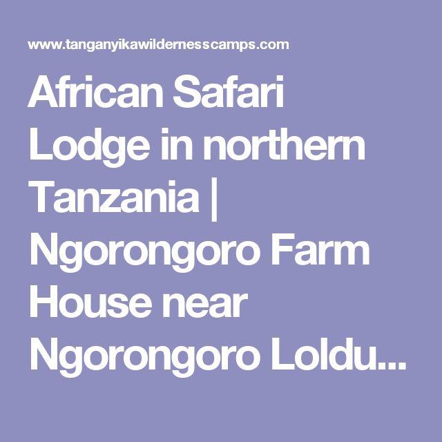 African Safari Lodge in northern Tanzania | Ngorongoro Farm House near Ngorongoro Lolduare gate (vegan Options)