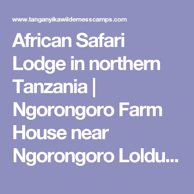 African Safari Lodge in northern Tanzania | Ngorongoro Farm House near Ngorongoro Lolduare gate (vegan Options)