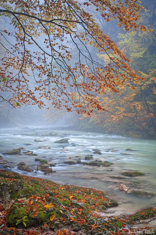 ✯ Vintgar Gorge in the Rain - Slovenia