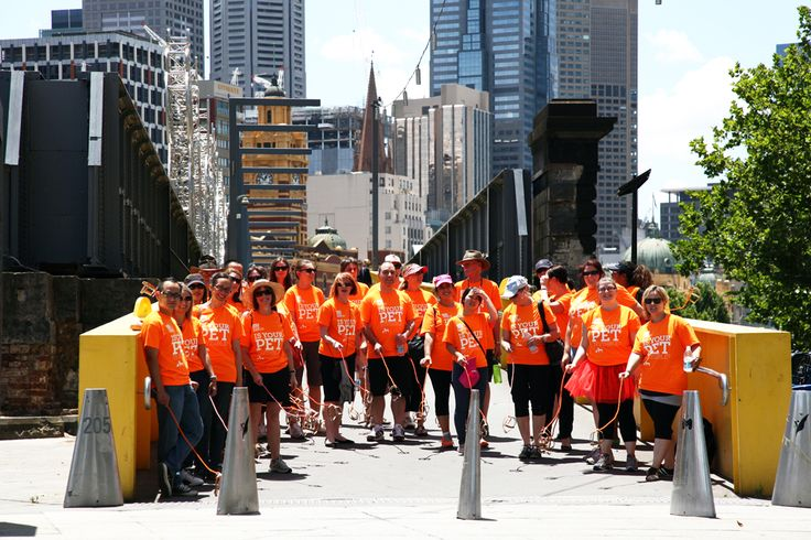 What do you get when you team up 30 volunteers with outstanding miming skills and an invisible dog walk through the city streets of Melbourne during the lunch time rush?    The answer is – plenty of attention.