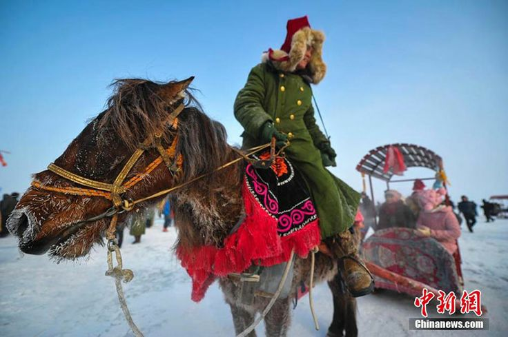 A horse pulls a sledge at the winter fishing festival. The winter fishing festival opened in Ulungur Lake, Xinjiang Uygur Autonomous Region on Saturday, January 18, 2014, attracting 30 thousand tourists. Winter fishing is a tradition in Ulungur Lake