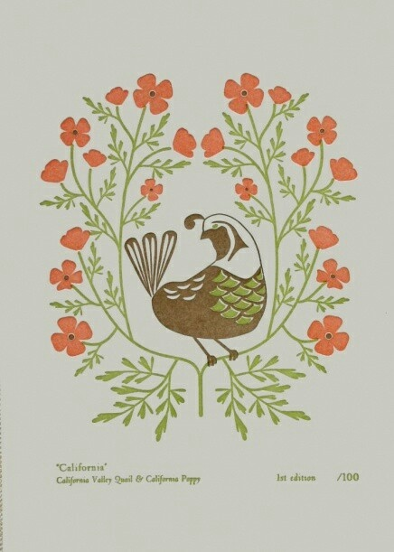 Quail and poppies