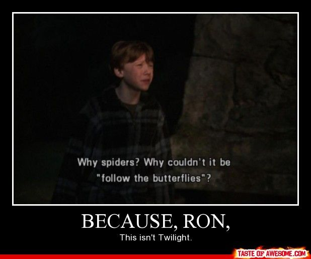 You go boy!: Chamber Of Secret, Spiders, Ronweasley, Twilight, Movie, Funnies, Harry Potter, Ron Weasley, Best Quotes