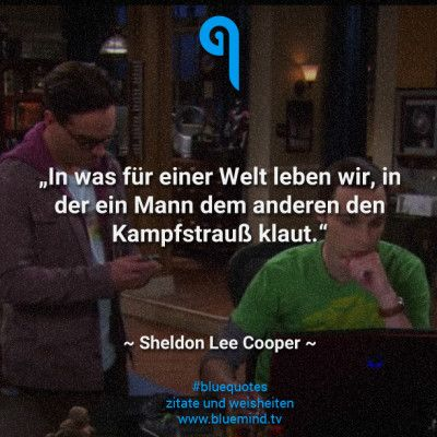 Sheldon Zitate