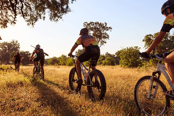 Cycle Tuli  Few experiences could rival an adventurous off-road path of the open plains within the northern Tuli Reserve, accompanied by herds of wild animals. Join the Cycle Tuli team for an invigorating afternoon or morning tour.  See more on http://www.wheretostay.co.za/cycletuli/