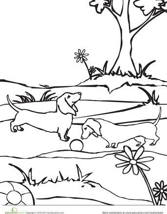 dachshund puppies coloring pages - photo#10