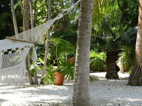 A lovely Bed & Breakfast in Curacao, Sombre Di Kabana