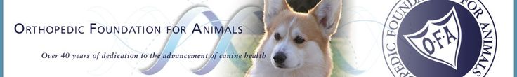 Orthopedic Foundation for Animals- health testing of purebred dogs