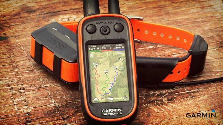 Navigace pro sledování pohybu psa v přírodě Garmin Alpha 100 + obojek T5