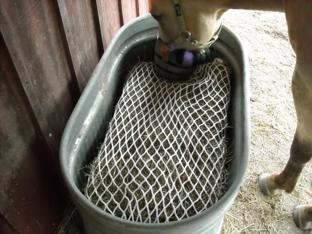 17 best images about slow feed hay net ideas on pinterest for Mesh feeder ideas