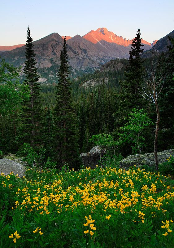Rocky Mountain,Longs Peak,Colorado, USA I was here in August of 2001. Absolutely gorgeous. Made it to Chasm Lake. Would love to return to summit.