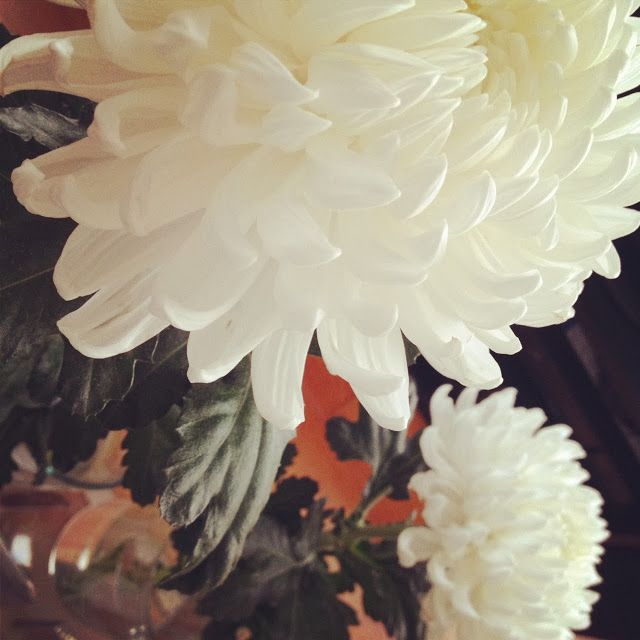 My Flowers at home