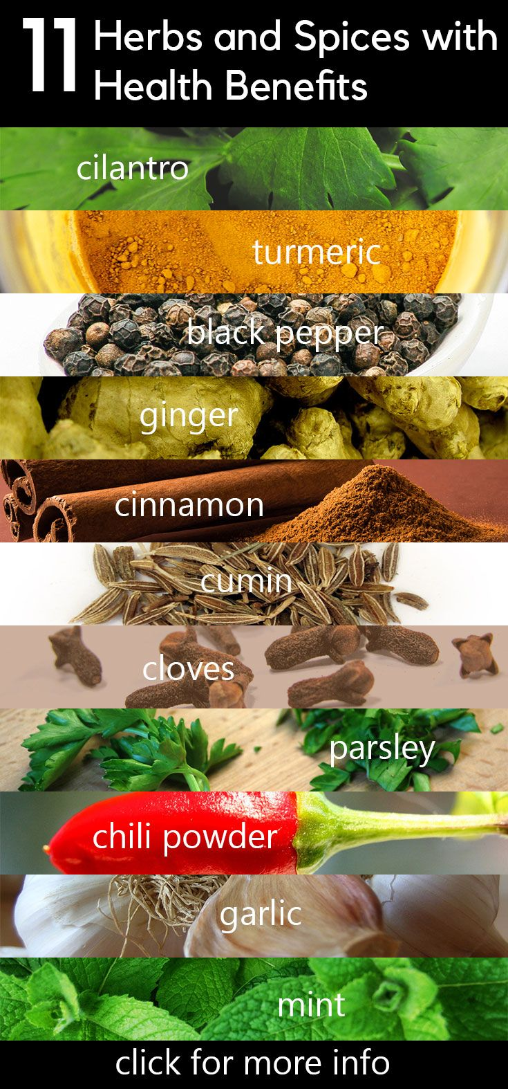 Eat These 11 Herbs and Spices for a Long, Healthy Life. Reduce disease and increase your life. Cilantro, turmeric, black pepper, ginger, cumin, cinnamon, cloves, parsley, chili powder, garlic, mint.