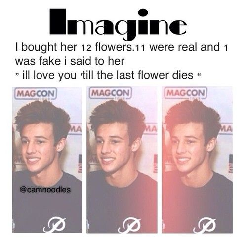 taylor caniff imagines - Google Search