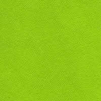 lime green - wall colour in the #livingroom, also use on cushions and as accent colour throughout the flat - in the #bathroom for mat, towels etc.