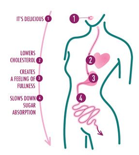 Farelo de aveia: 5 2 Diet, Dieta Dukan, Dukan Diet, Healthy Eating, 52 Diet, Livros Dieta, Diet Oats, Dietary Self-Imun, Oats