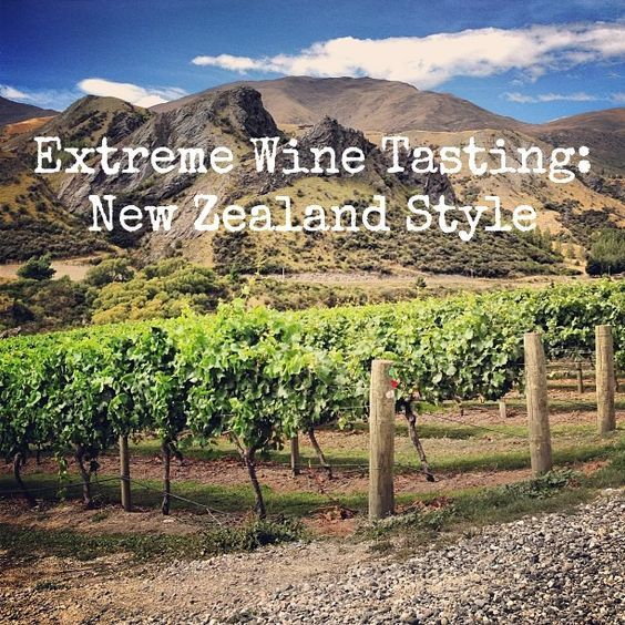 Extreme Wine Tasting, New Zealand Style. An overview of wine tasting on New Zealand's South Island - Central Otago, Marlborough, and Nelson. Includes recommended wineries and wines.: