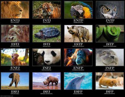 Tableau des correspondances entre les profils MBTI et les animaux ! Pour en savoir plus sur le test de personnalité MBTI, allez sur lutetiaflaviae.com