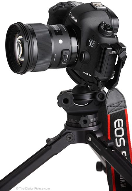 Sigma 50mm f/1.4 DG HSM Art Lens on EOS 5D Mark III