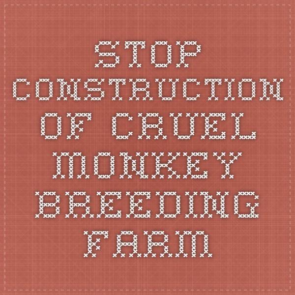 Stop Construction of Cruel Monkey Breeding Farm