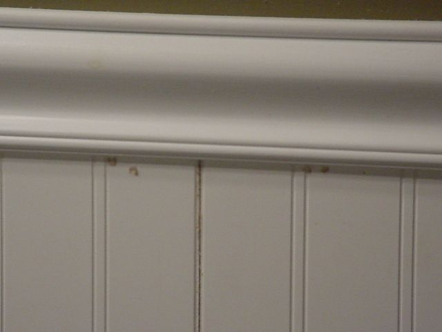 How to Install Beadboard Panels (7 Steps)