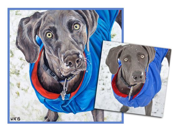 CUSTOM DOG PAINTING pet portrait original oil painting hand painted weimaraner art great gift 12x12 made to order by Heather Hughes