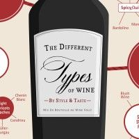 Different Types of Wine Infographic Close Up