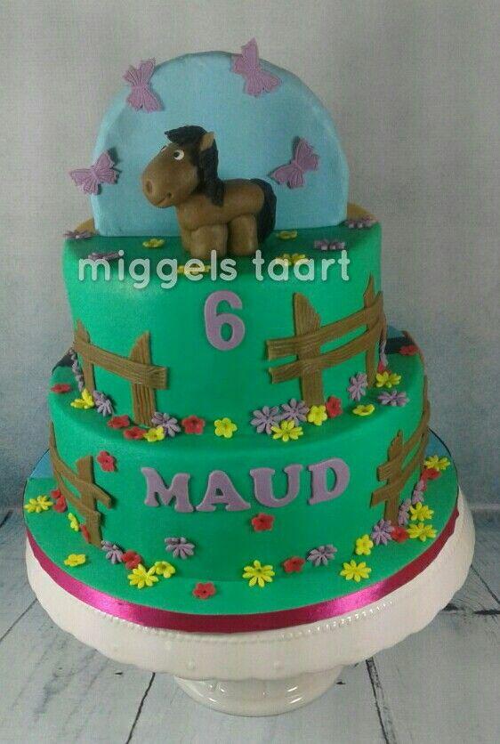 Double sided cake horse/cookie monster  paard taart koekiemonster